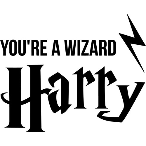 Harry Potter You're A Wizard Harry Vinyl Decal <div> High glossy, premium 3 mill vinyl, with a life span of 5 – 7 years! </div>