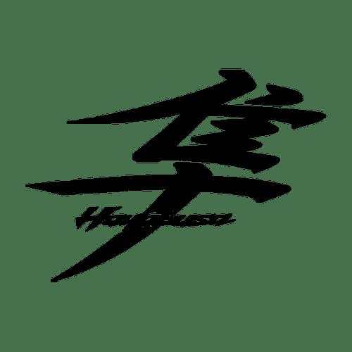 Suzuki Hayabusa 2