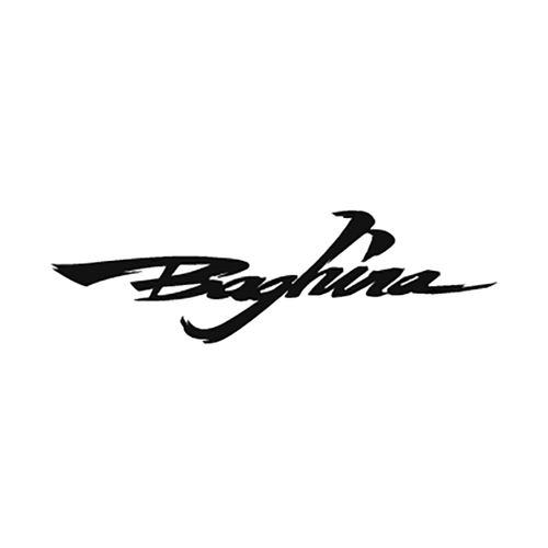 30892 Baghira Vinyl Decal <div> High glossy, premium 3 mill vinyl, with a life span of 5 – 7 years! </div>