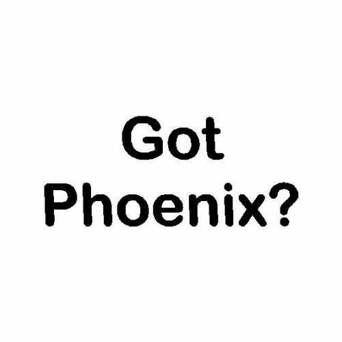 Capital Got Phoenix Az  Vinyl Decal Sticker  Size option will determine the size from the longest side Industry standard high performance calendared vinyl film Cut from Oracle 651 2.5 mil Outdoor durability is 7 years Glossy surface finish