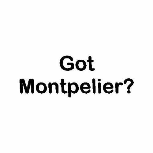 Capital Got Montpelier Vt  Vinyl Decal Sticker  Size option will determine the size from the longest side Industry standard high performance calendared vinyl film Cut from Oracle 651 2.5 mil Outdoor durability is 7 years Glossy surface finish
