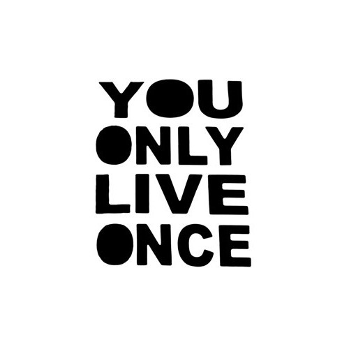 Saying yolo decal High glossy, premium 3 mill vinyl, with a life span of 5 - 7 years!