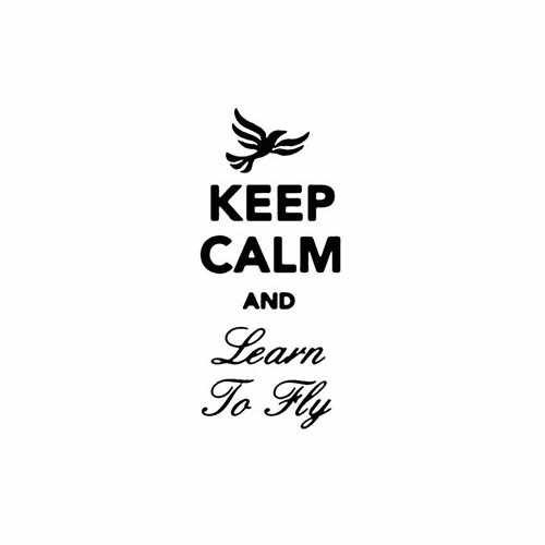 Keep Calm And Learn To Fly Vinyl Decal Sticker Size option will determine the size from the longest side Industry standard high performance calendared vinyl film Cut from Oracle 651 2.5 mil Outdoor durability is 7 years Glossy surface finish