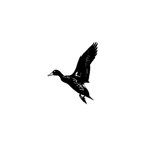 Duck ver7   Vinyl Decal High glossy, premium 3 mill vinyl, with a life span of 5 - 7 years!