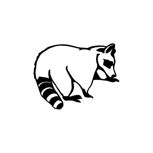 Raccoon ver2   Vinyl Decal High glossy, premium 3 mill vinyl, with a life span of 5 - 7 years!