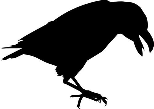 Crow Raven Blackbird V2 Vinyl Decal Sticker High glossy, premium 3 mill vinyl, with a life span of 5 - 7 years!