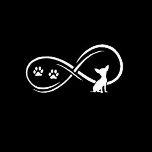 Chihuahua love infinity  Decal High glossy, premium 3 mill vinyl, with a life span of 5 - 7 years!