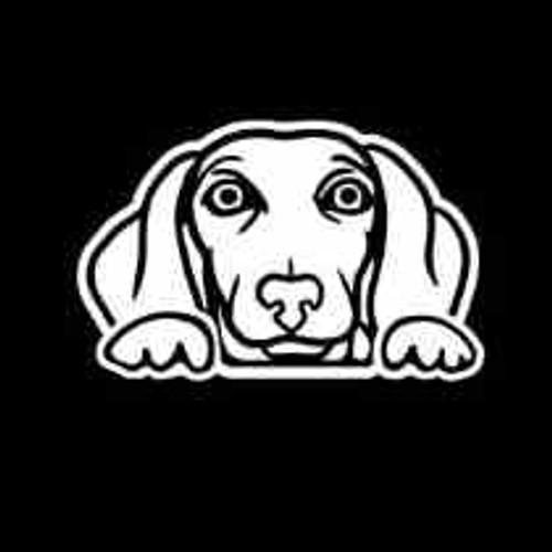Dachshund Weiner Dog Peeking  Decal High glossy, premium 3 mill vinyl, with a life span of 5 - 7 years!