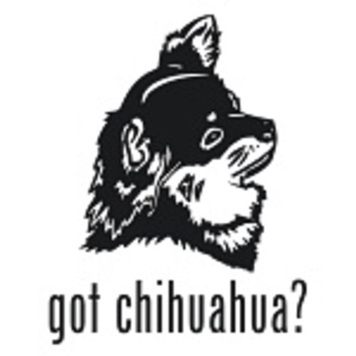 Got Chihuahua? Toy Dog   Decal High glossy, premium 3 mill vinyl, with a life span of 5 - 7 years!