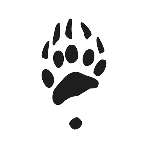 Brown bear Vinyl Decal High glossy, premium 3 mill vinyl, with a life span of 5 - 7 years!
