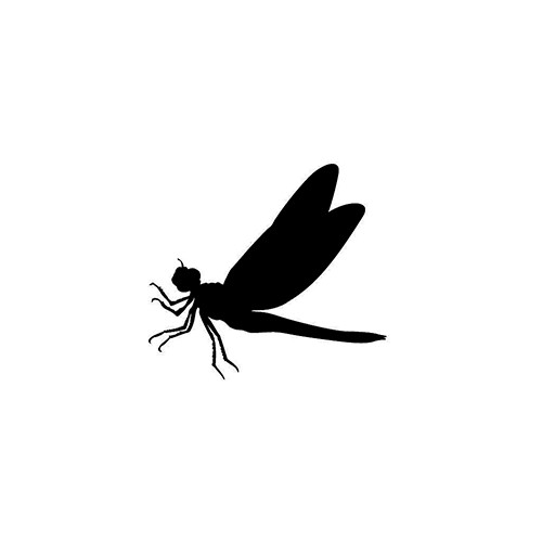 Dragonfly ver3   Vinyl Decal High glossy, premium 3 mill vinyl, with a life span of 5 - 7 years!