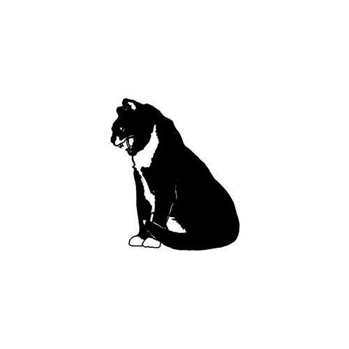 Cat ver4     Vinyl Decal High glossy, premium 3 mill vinyl, with a life span of 5 - 7 years!
