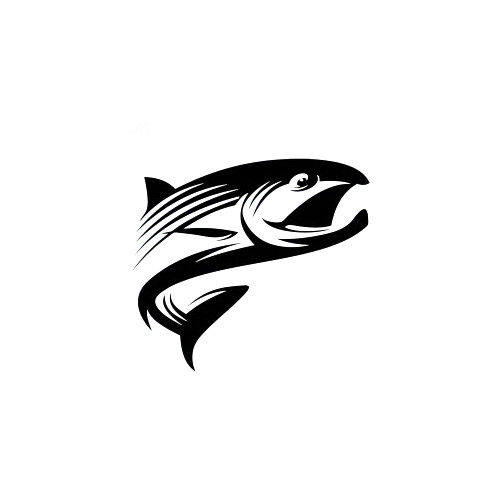 King Salmon Decal High glossy, premium 3 mill vinyl, with a life span of 5 - 7 years!