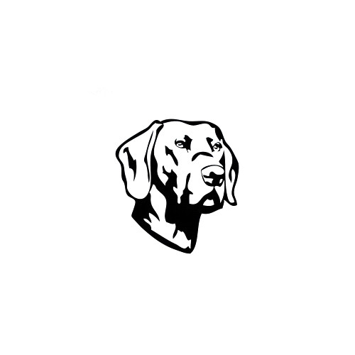 Labrador Retriever Decal High glossy, premium 3 mill vinyl, with a life span of 5 - 7 years!