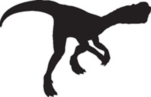 Dinosaur 14 Vinyl Decal High glossy, premium 3 mill vinyl, with a life span of 5 - 7 years!