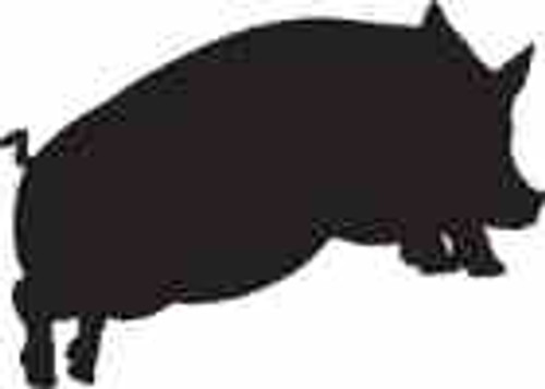 Pig 11 Vinyl Decal High glossy, premium 3 mill vinyl, with a life span of 5 - 7 years!