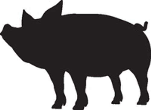 Pig 13 Vinyl Decal High glossy, premium 3 mill vinyl, with a life span of 5 - 7 years!