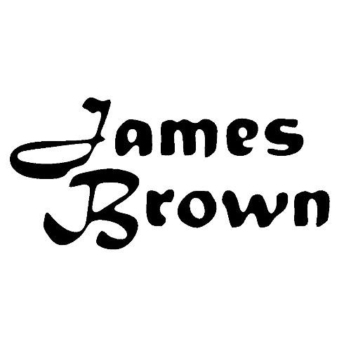 Our James Brown  Vinyl Decal Sticker is offered in many color and size options. <strong>PREMIUM QUALITY</strong> <ul>  <li>High Performance Vinyl</li>  <li>3 mil</li>  <li>5 - 7 Outdoor Lifespan</li>  <li>High Glossy</li>  <li>Made in the USA</li> </ul> &nbsp;