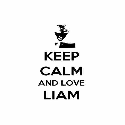 Keep Calm And Love Liam  Vinyl Decal Sticker  Size option will determine the size from the longest side Industry standard high performance calendared vinyl film Cut from Oracle 651 2.5 mil Outdoor durability is 7 years Glossy surface finish