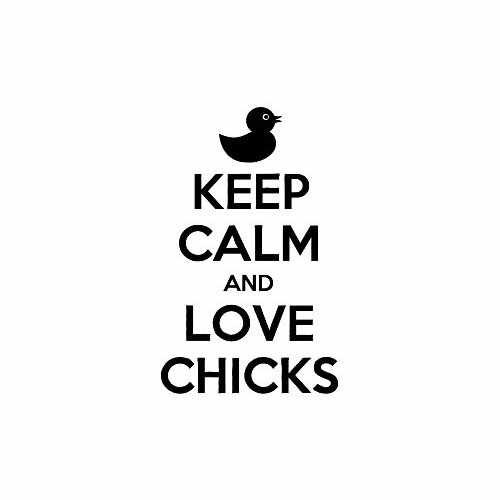 Keep Calm And Love Chicks  Vinyl Decal Sticker  Size option will determine the size from the longest side Industry standard high performance calendared vinyl film Cut from Oracle 651 2.5 mil Outdoor durability is 7 years Glossy surface finish