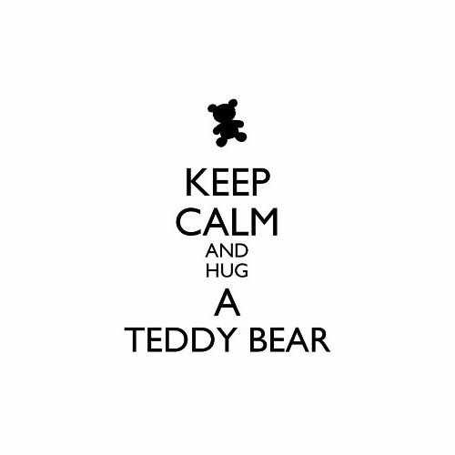 Keep Calm And Hug A Teddy Bear  Vinyl Decal Sticker  Size option will determine the size from the longest side Industry standard high performance calendared vinyl film Cut from Oracle 651 2.5 mil Outdoor durability is 7 years Glossy surface finish