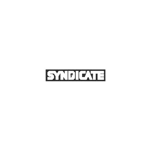 Santa Cruz Bicycles Syndicate Block Supersize Vinyl Decal Sticker  Size option will determine the size from the longest side Industry standard high performance calendared vinyl film Cut from Oracle 651 2.5 mil Outdoor durability is 7 years Glossy surface finish