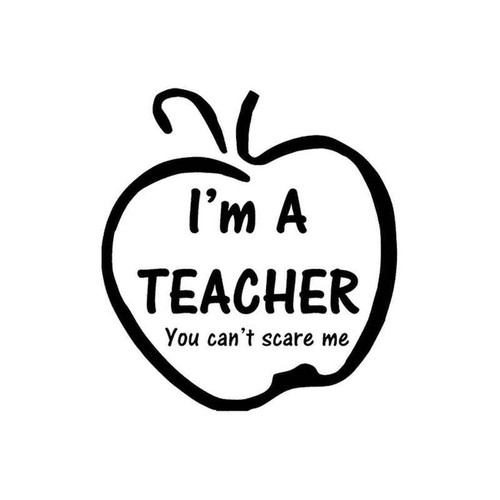 49 Im A Teacher Vinyl Sticker