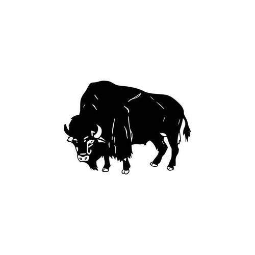 Buffalo Wildlfie Vinyl Sticker