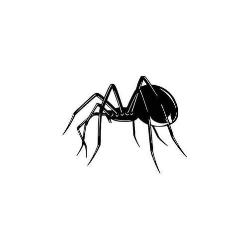 Spider Wildlfie Vinyl Sticker