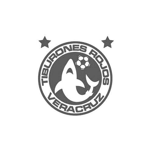 Veracruz Futbol Vinyl Sticker