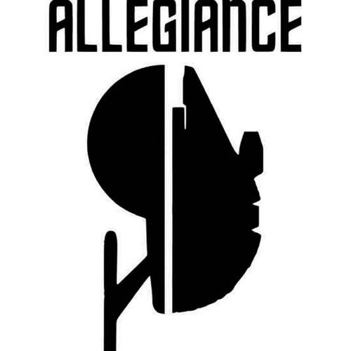 Star Wars Star Trek Divided Allegiance Vinyl Sticker