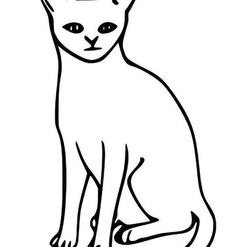 Abyssinian Cat Vinyl Sticker