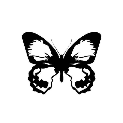 Butterfly 13 Vinyl Sticker