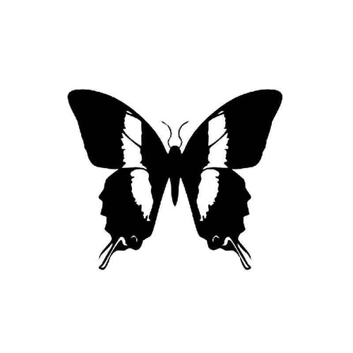 Butterfly 17 Vinyl Sticker