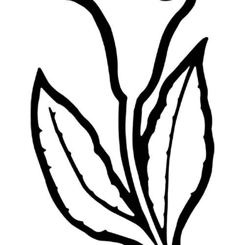 Calla Lily Flower 1 Vinyl Sticker