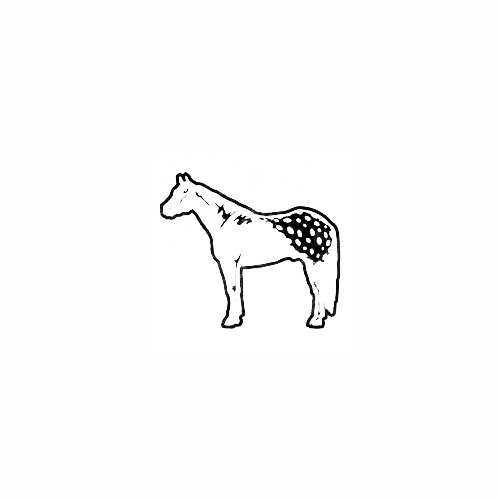 Appaloosa Horse Decal (01) Size option will determine the size from the longest side Industry standard high performance calendared vinyl film Cut from Oracle 651 2.5 mil Outdoor durability is 7 years Glossy surface finish
