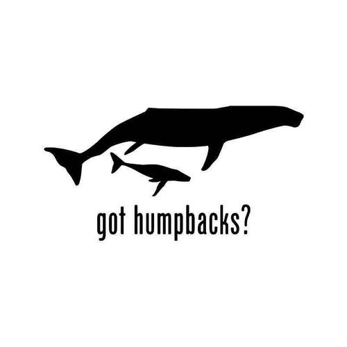 Got Humpbacks Whale Fish Vinyl Sticker