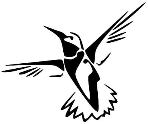 Hummingbird Bird 2