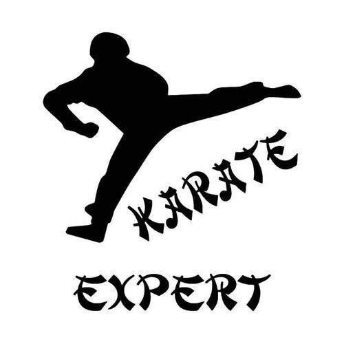 Karate Expert Vinyl Sticker