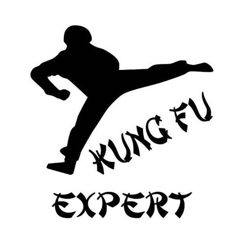 Kung Fu Expert Vinyl Sticker