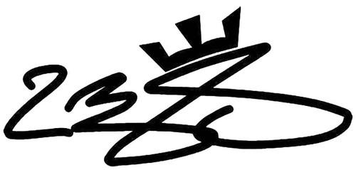 Lebron James Signature
