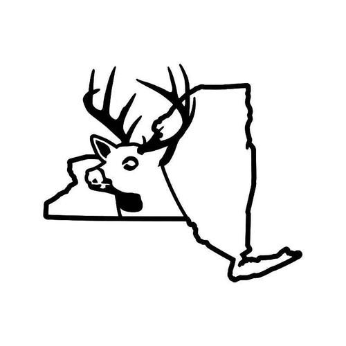 New York State Deer Buck Hunting