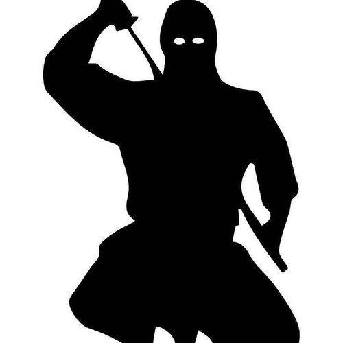 Ninja Warrior Japanese Vinyl Sticker