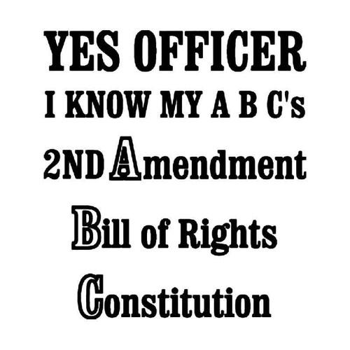 Officer Amendents Vinyl Sticker
