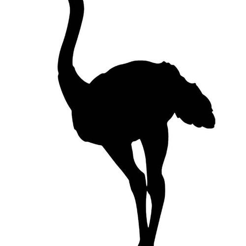Ostrich 2 Vinyl Sticker