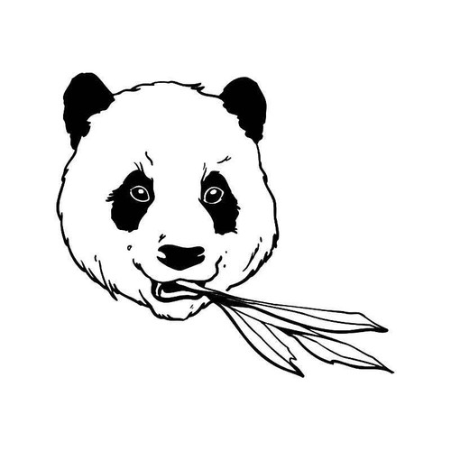 Panda Bear 6 Vinyl Sticker