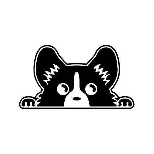 Pembroke Welsh Corgi Dog Peeking Vinyl Sticker