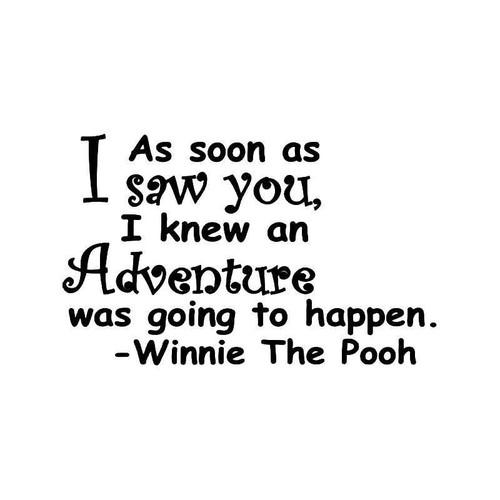 Pooh Adventure Quote Vinyl Sticker