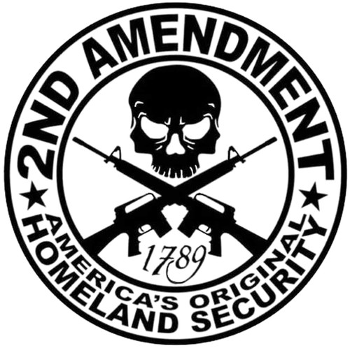 2nd Amendment 2