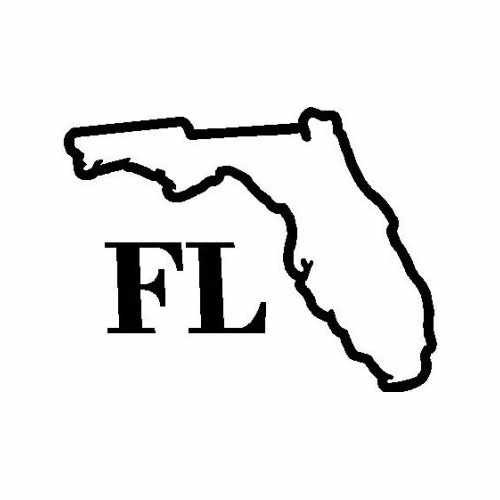 State Florida  Vinyl Decal Sticker  Size option will determine the size from the longest side Industry standard high performance calendared vinyl film Cut from Oracle 651 2.5 mil Outdoor durability is 7 years Glossy surface finish